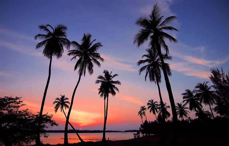 Circuit si sejur Sri Lanka