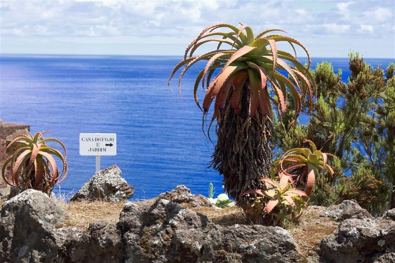 Circuit Insulele Azore si Madeira