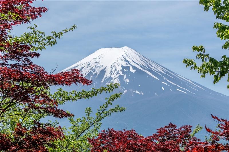 Paste in Japonia