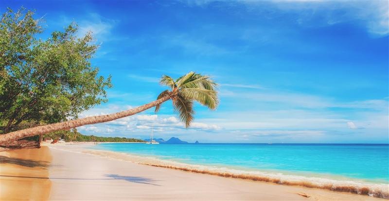 Revelion Croaziera Miami - Caraibe