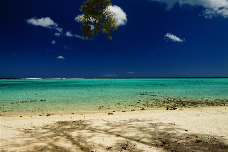 Revelion Mauritius