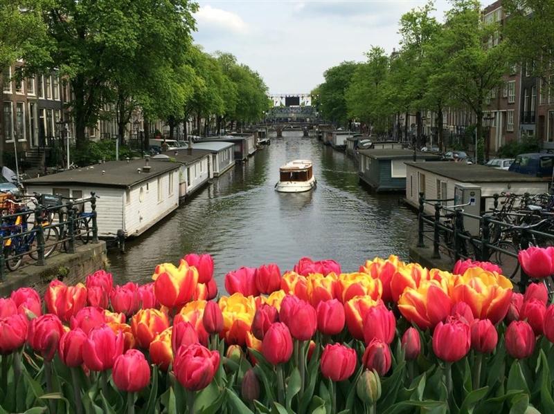 Amsterdam Inflorirea Lalelelor
