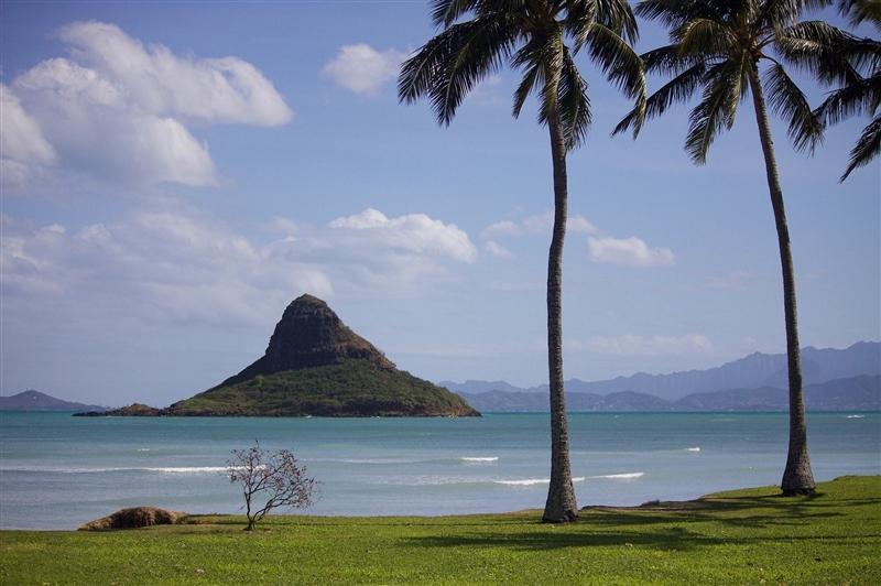 Circuit Hawaii si California