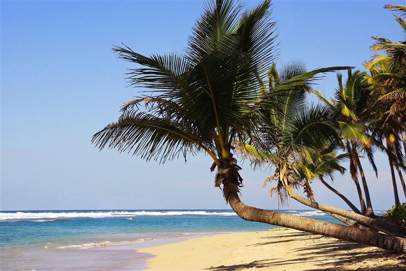 Vacanta Punta Cana