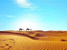 Circuit Egipt - Misterele faraonilor (noiembrie) · Circuit Egipt - Misterele faraonilor (noiembrie)