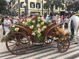 Circuit Madeira - Festivalul Florilor · Circuit Madeira - Festivalul Florilor