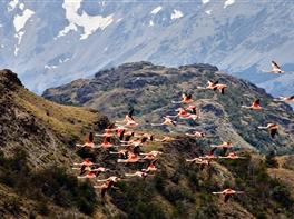 Circuit Tara de Foc - Patagonia · Circuit Tara de Foc - Patagonia