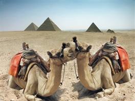 Circuit Egipt 9 zile · Circuit Egipt 9 zile
