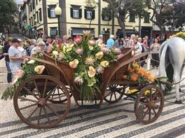 Festivalul Florilor in Madeira - 2020 · Festivalul Florilor in Madeira - 2020