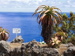 Insulele Azore si Madeira · Insulele Azore si Madeira