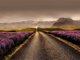 Islanda - Tur Complet · Islanda - Tur Complet