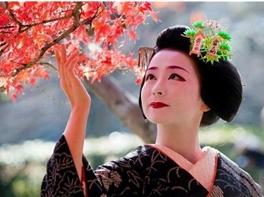 JAPONIA 2018 - Sarbatoarea ciresilor in floare · JAPONIA 2018 - Sarbatoarea ciresilor in floare