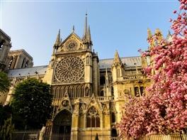 Paris de 8 Martie · Paris de 8 Martie