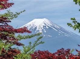 Paste in Japonia · Paste in Japonia