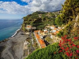 Paste Madeira · Paste Madeira