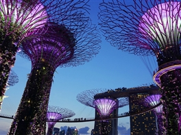 Revelion Singapore · Revelion Singapore