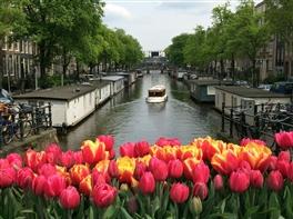 Sejur Amsterdam - Inflorirea Lalelelor · Sejur Amsterdam - Inflorirea Lalelelor