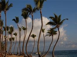 Sejur exotic Republica Dominicana - Punta Cana · Sejur exotic Republica Dominicana - Punta Cana