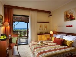 Hotel Blue Dolphin Sithonia Halkidiki