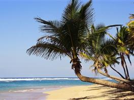Vacanta in Caraibe - Punta Cana · Vacanta in Caraibe - Punta Cana