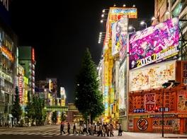 Vacanta Tokyo - Orasul Contrastelor · Vacanta Tokyo - Orasul Contrastelor